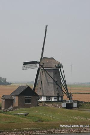 Foto: Michel van Bergen - Texel