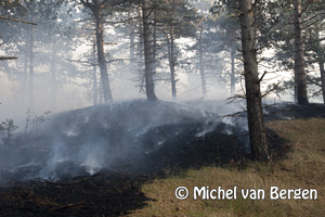 Foto Foto's zeer grote duinbrand Bergen