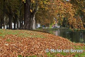 Foto: Herfst doet zijn intrede in het prachtige Heemsteedse landschap