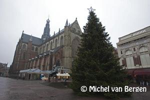 Foto Grote Markt in Haarlem voorzien van grote kerstboom