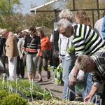 Tuinevenement Stadskweektuin Haarlem noord druk bezocht