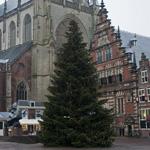Grote Markt in Haarlem voorzien van grote kerstboom