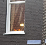 Persoon gewond bij brand in woning Wilgenstraat Haarlem Noord
