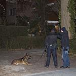 Zoektocht naar inbrekers in Velsen-Zuid