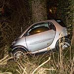 Dronken automobilist schiet van de weg af in Nieuw-Vennep