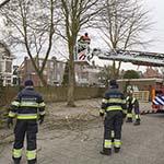 Afgebroken tak moet door brandweer uit boom worden gezaagd